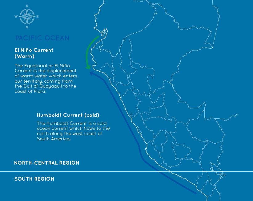 Zona Centro Norte