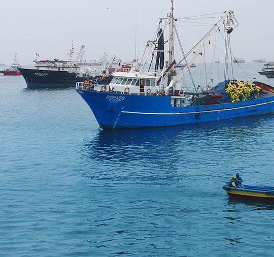 OFICINA CALLAO (Flota)