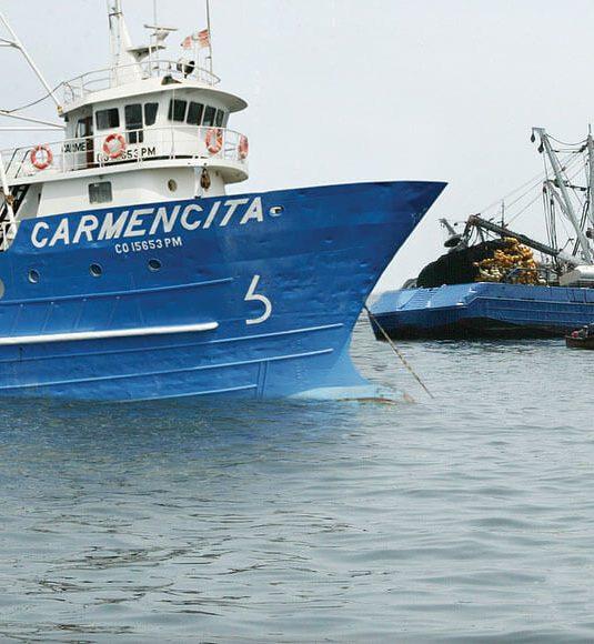 Se autoriza inicio de temporada de pesca para la zona Centro – Norte